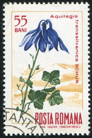 ROMANIA - CIRCA 1967: stamp printed by Romania, show Columbine, circa 1967. Stock Photo - 10071819