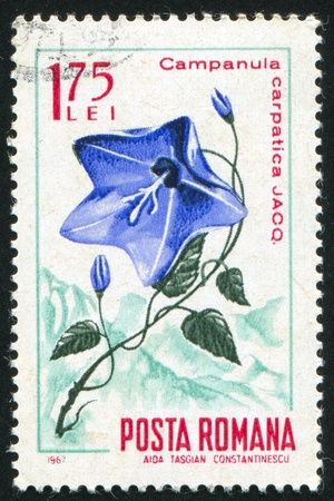 ROMANIA - CIRCA 1967: stamp printed by Romania, show bell flower, circa 1967. Stock Photo - 10071703