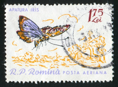 ROMANIA - CIRCA 1964: stamp printed by Romania, show butterfly, circa 1964. photo
