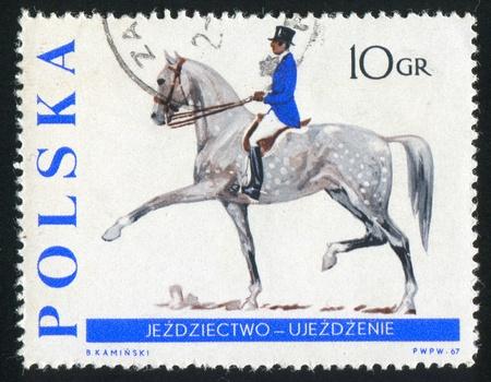 jackboots: POLAND - CIRCA 1967: stamp printed by Poland, shows Dressage, circa 1967