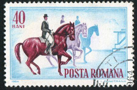 show horse: ROMANIA - CIRCA 1964: stamp printed by Romania, show Horse Show, circa 1964.