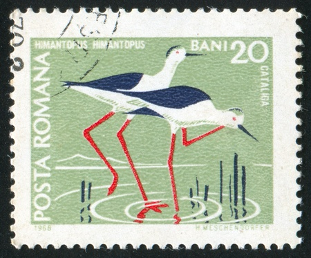 stilts: ROMANIA - CIRCA 1968: stamp printed by Romania, show European stilts, circa 1968.