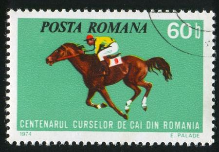 show horse: ROMANIA - CIRCA 1974: stamp printed by Romania, show horse races, circa 1974.