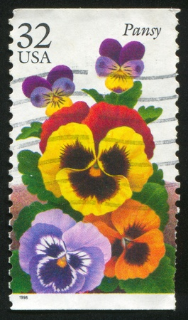 UNITED STATES - CIRCA 1996: stamp printed by United states, shows Pansy, circa 1996 photo