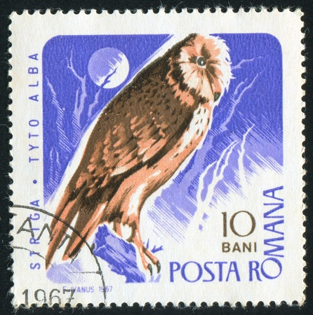 ROMANIA - CIRCA 1967: stamp printed by Romania, shows Barn Owl, circa 1967 photo