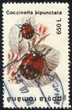 coccinella: ROMANIA - CIRCA 1996: stamp printed by Romania, shows Coccinella bipunctata, circa 1996 Stock Photo