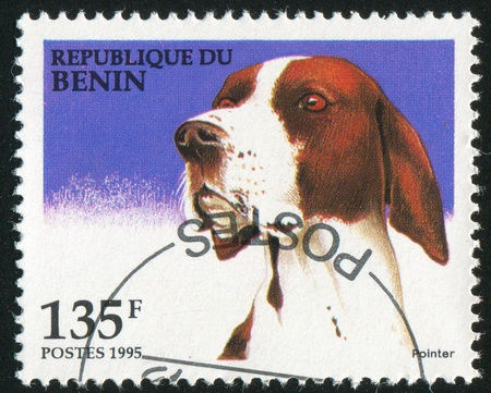 benin: BENIN - CIRCA 1995: stamp printed by Benin, shows Pointer, circa 1995.