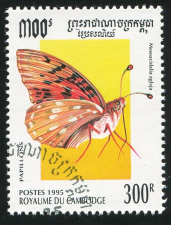 CAMBODIA - CIRCA 1995: stamp printed by Cambodia, shows butterfly, circa 1995. photo