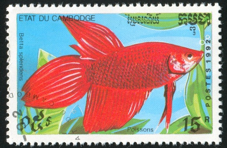 CAMBODIA - CIRCA 1992: stamp printed by Cambodia, shows snake, circa 1992. photo