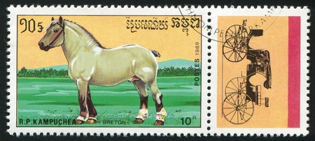 gelding: CAMBODIA - CIRCA 1989: stamp printed by Cambodia, shows horse, circa 1989. Stock Photo
