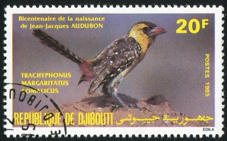 djibouti: DJIBOUTI - CIRCA 1985: stamp printed by Djibouti, shows bird, circa 1985
