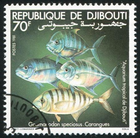 fish toy: GIBUTI - CIRCA 1981: timbro stampato da Gibuti, spettacoli pesce giocattolo, circa 1981