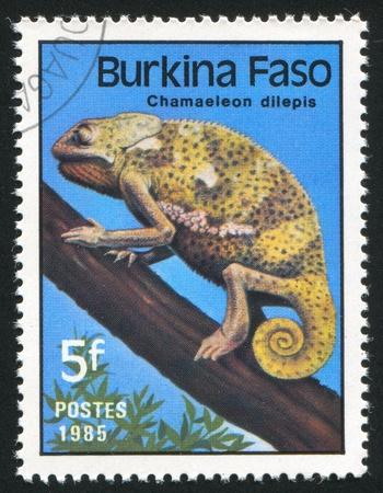 BURKINA FASO CIRCA 1985: stamp printed by Burkina Faso, shows Chameleon, circa 1985 photo
