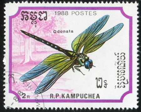 tarsus: CAMBOGIA CIRCA 1988: timbro stampato dalla Cambogia, mostra Dragonfly, circa 1988
