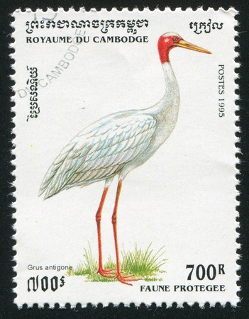 CAMBODIA CIRCA 1995: stamp printed by Cambodia, shows Crane, circa 1995 photo