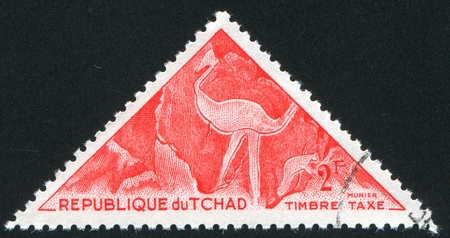 CHAD - CIRCA 1962: stamp printed by Chad, shows Tibesti Pictograph, Ostrich, circa 1962 photo
