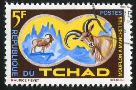CHAD - CIRCA 1965: stamp printed by Chad, shows Aoudad or Barbary Sheep, circa 1965 photo