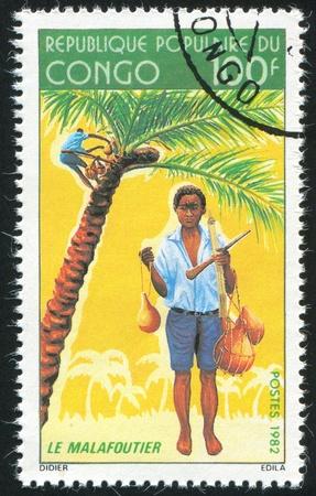 CONGO CIRCA 1982: stamp printed by Congo, shows Boy Gathering Coconuts, circa 1982 photo