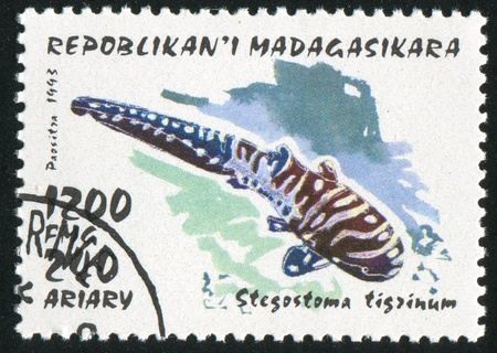 MADAGASCAR - CIRCA 1993: stamp printed by Madagascar, shows shark, circa 1993 photo