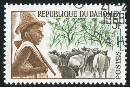 DAHOMEY CIRCA 1963: stamp printed by Dahomey, shows Peuhl Herdsman and Cattle, circa 1963 Stock Photo - 13669286