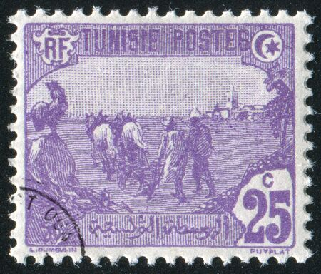 TUNISIA - CIRCA 1921: stamp printed by Tunisia, shows Plowing, circa 1921 photo