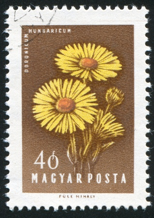 HUNGARY - CIRCA 1958: stamp printed by Hungary, shows Hungarian Thistles, circa 1958 Stock Photo - 11176075