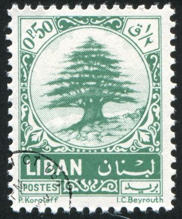 el cedro: L�BANO - CIRCA 1974: sello impreso por Libanon, muestra cedro del L�bano, alrededor de 1974