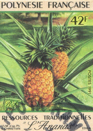 knobby: FRENCH POLYNESIA CIRCA 1991: stamp printed by French Polynesia, shows Pineapple, circa 1991
