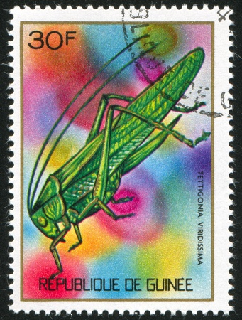 GUINEA CIRCA 1973: stamp printed by Guinea, shows Green locust, circa 1973 Stock Photo - 11339549