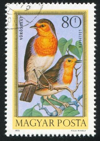 robins: HUNGARY - CIRCA 1972: stamp printed by Hungary, shows bird, Robins, circa 1972 Stock Photo