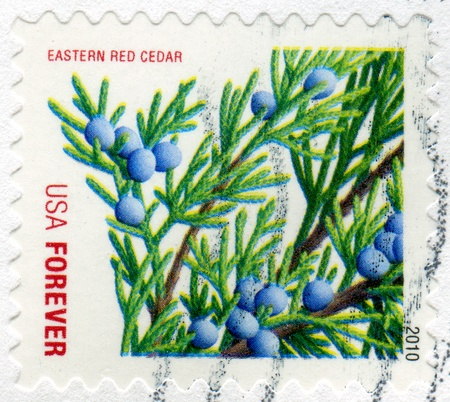 UNITED STATES - CIRCA 2010: stamp printed by United States of America, shows branch of eastern red cedar, circa 2010 photo