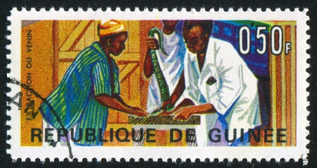 venom: GUINEA CIRCA 1967: stamp printed by Guinea, shows Extraction of snake venom, circa 1967