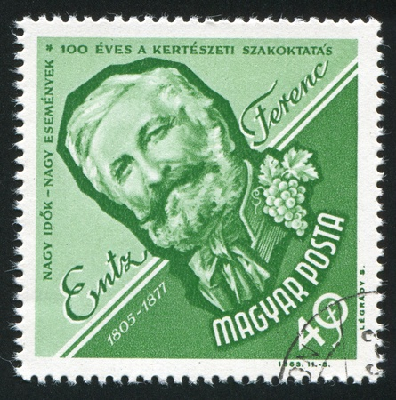horticulturist: HUNGARY - CIRCA 1963: stamp printed by Hungary, shows Ferenc Entz, Horticulturist, circa 1963
