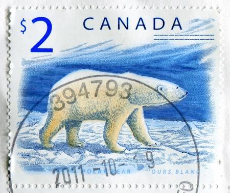 CANADA - CIRCA 1998: stamp printed by Canada, shows polar bear, circa 1998 Stock Photo - 11755131