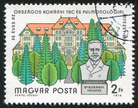 sanitarium: HUNGARY - CIRCA 1976: stamp printed by Hungary, shows Koranyi Sanitarium and Statue, circa 1976