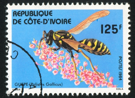 IVORY COAST CIRCA 1984: stamp printed by Ivory Coast, shows Paper wasp, circa 1984 Stock Photo - 11755788
