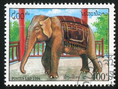 LAOS CIRCA 1994: stamp printed by Laos, shows Elephant Beside railing, circa 1994 Stock Photo - 11755905