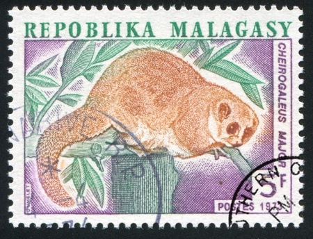 MALAGASY CIRCA 1973: stamp printed by Malagasy, shows Greater Dwarf Lemur, circa 1973 Stock Photo - 11755848