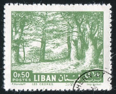 LEBANON CIRCA 1961: stamp printed by Lebanon, shows Cedars, circa 1961 photo