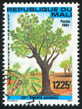 MALI CIRCA 1984: stamp printed by Mali, shows Shea tree, circa 1984 photo