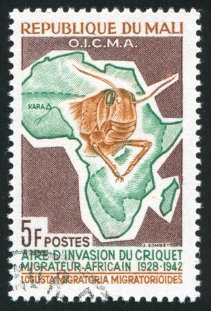 MALI CIRCA 1964: stamp printed by Mali, shows Head of locust and map of Africa, circa 1964 Stock Photo - 11893278