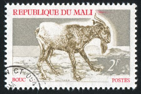 MALI - CIRCA 1969: stamp printed by Mali, shows Goat, circa 1969 photo
