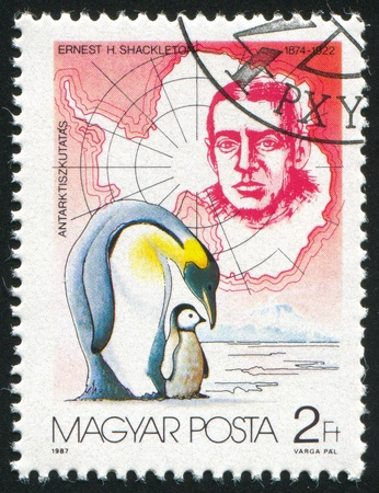 HUNGARY - CIRCA 1987: stamp printed by Hungary, shows Ernest H. Shackleton and Penguins, circa 1987 Stock Photo - 12117046