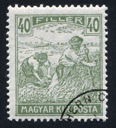 HUNGARY - CIRCA 1916: stamp printed by Hungary, shows Harvesting Wheat, circa 1916 photo