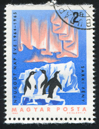 polar light: HUNGR�A CIRCA 1965: sello impreso por Hungr�a, muestra icebergs, ping�inos y la luz polar, alrededor del a�o 1965 Foto de archivo