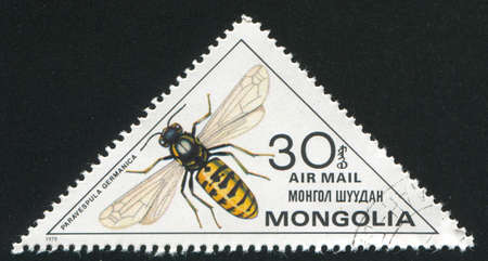 MONGOLIA - CIRCA 1979: stamp printed by Mongolia, shows  insect, circa 1979 photo