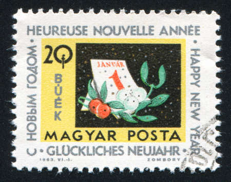 HUNGARY  CIRCA 1963: stamp printed by Hungary, shows Calendar and mistletoe horiz,  circa 1963 photo