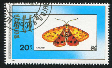 MONGOLIA - CIRCA 1990: stamp printed by Mongolia, shows  butterfly, circa 1990 photo