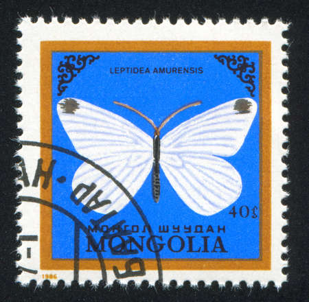MONGOLIA - CIRCA 1986: stamp printed by Mongolia, shows butterfly, circa 1986 photo