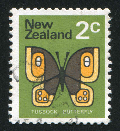 NEW ZEALAND - CIRCA 1970: stamp printed by New Zealand, shows butterfly Tussock, circa 1970 photo